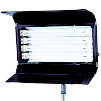 PowerFlo 4x55w with DMX/Local dimming 120v-230v - for use F55BXCIN32 or 56 lamps - no plug