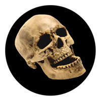 ROSCO:260-86686 -- 86686 Laughing Skull Multi Color Glass Gobo By Kc Hooper, Size: Specify